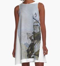Overhanging Rock A-Line Dress