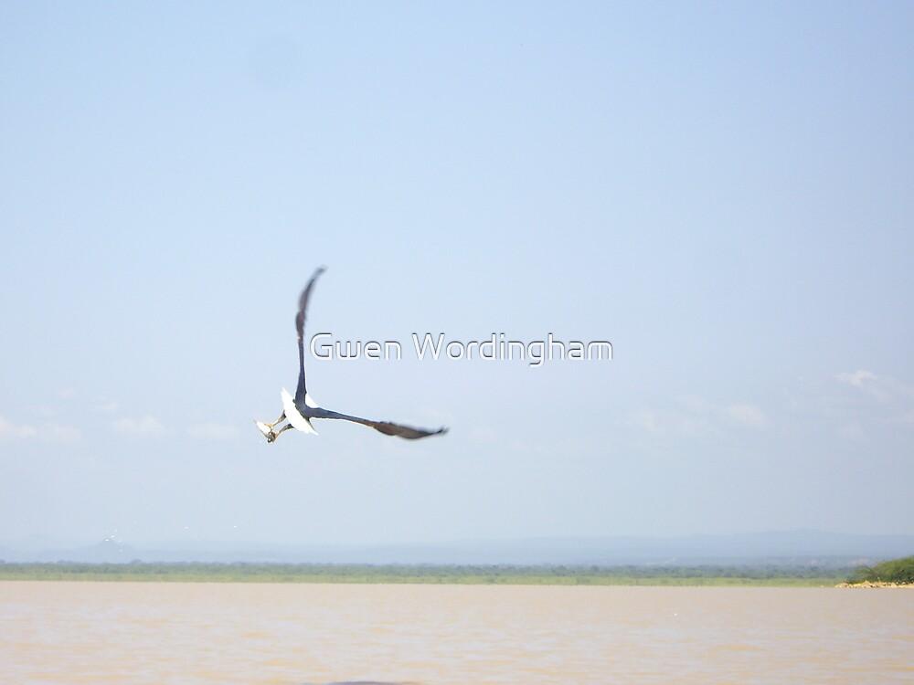 Fish Eagle, Lake Baringo, Kenya by Gwen Wordingham