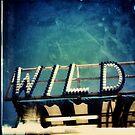 Wild Lights by iamsla
