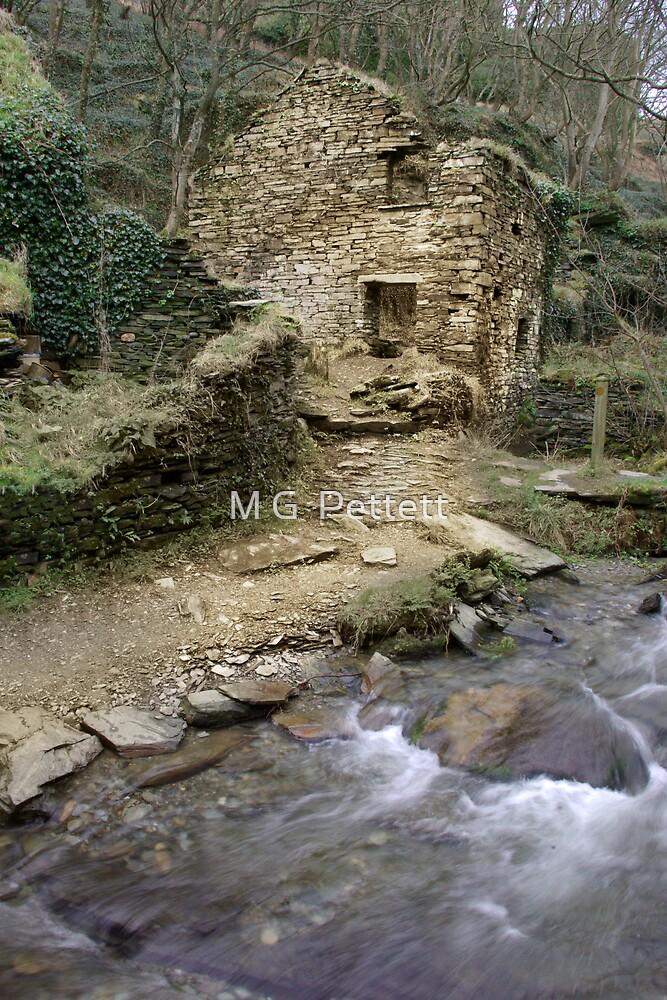 Trewethet Mill by M G  Pettett