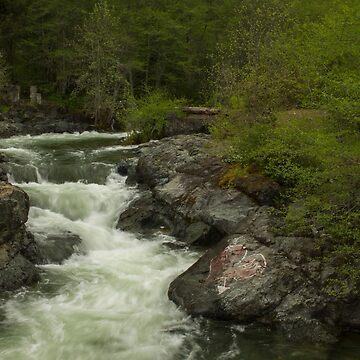 Dunn Creek by evensteven