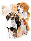 Beagle /Ghost by BarbBarcikKeith