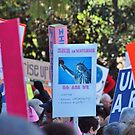 The Women's March by Stephen Burke