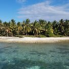 Punta Cana, Dominican Republic Beach by Samm Poirier