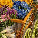 USA. Pennsylvania. Philadelphia Flower Show 2017. Cart. by vadim19