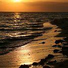 Golden Shores by Jonicool