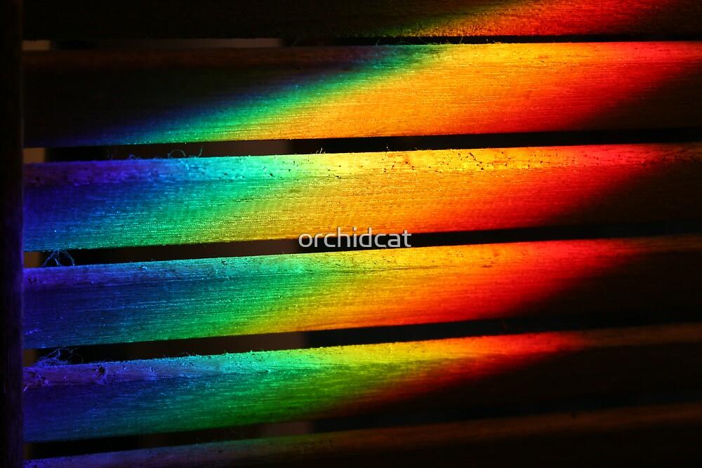 The spectrum by orchidcat