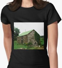 Another Irish Barn, Donegal, Ireland Womens Fitted T-Shirt