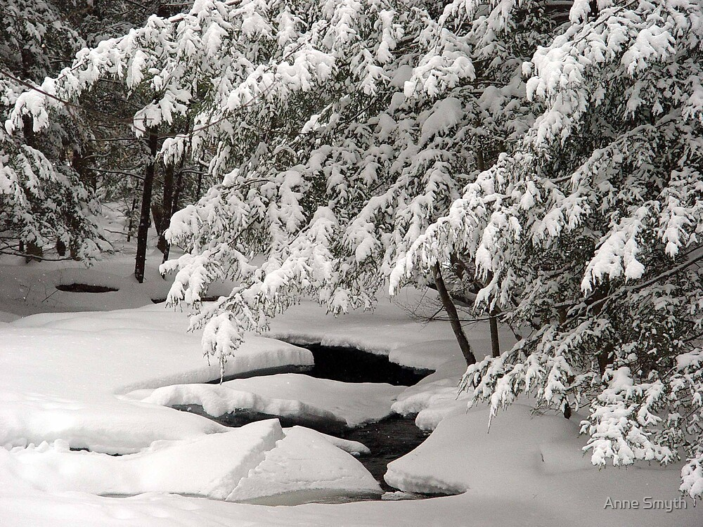 Snowfall by Anne Smyth