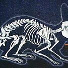 Rabbit Skeleton by chelsgus