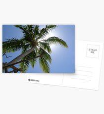 Summer sun Postcards