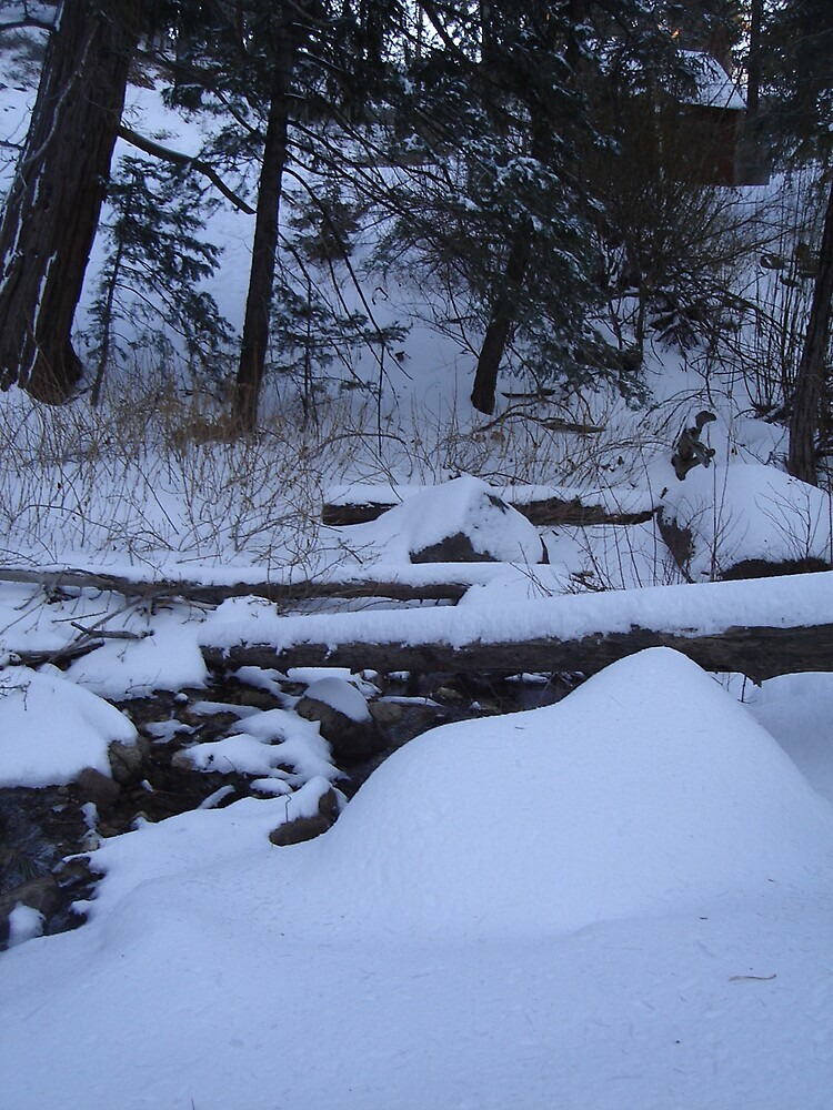 winter camp by love2takepics