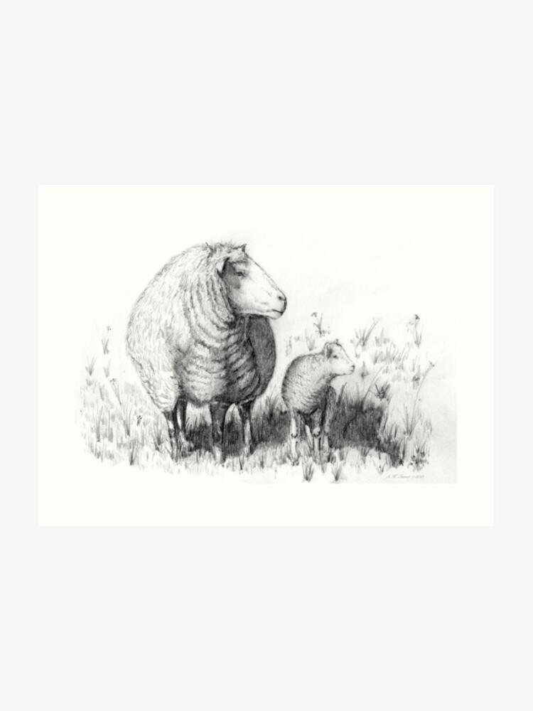 Mother Sheep & Lamb Pencil Drawing Sketch | Art Print