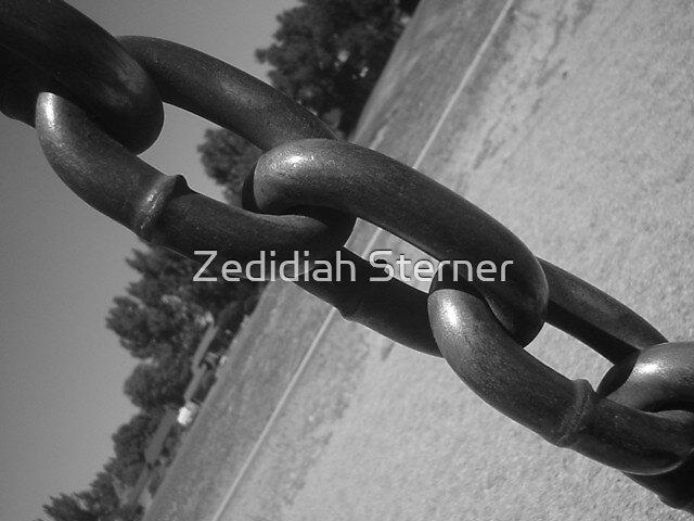 Untitled by Zedidiah Sterner