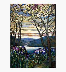 Magnolias and Irises   Photographic Print