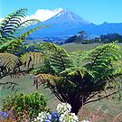 Taranaki/Mount Egmont  NZ by kevin smith  skystudiohawaii