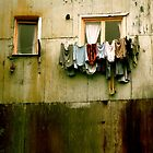 Out to Dry by Valerie Rosen