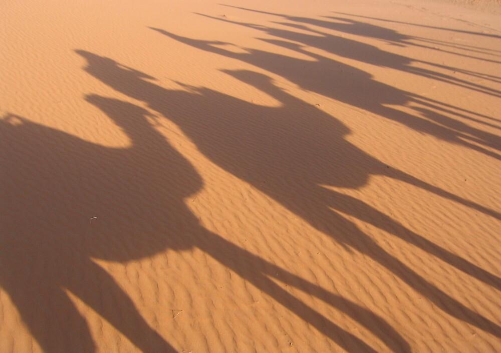 Camel Caravan by PaskyJr