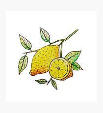 Lemon  Photographic Print