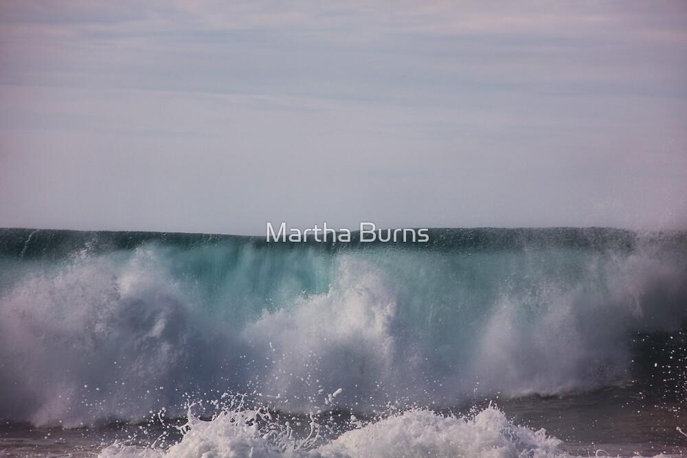 Rolling water log by Martha Burns