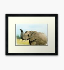 African elephant with raised trunk.  Framed Print