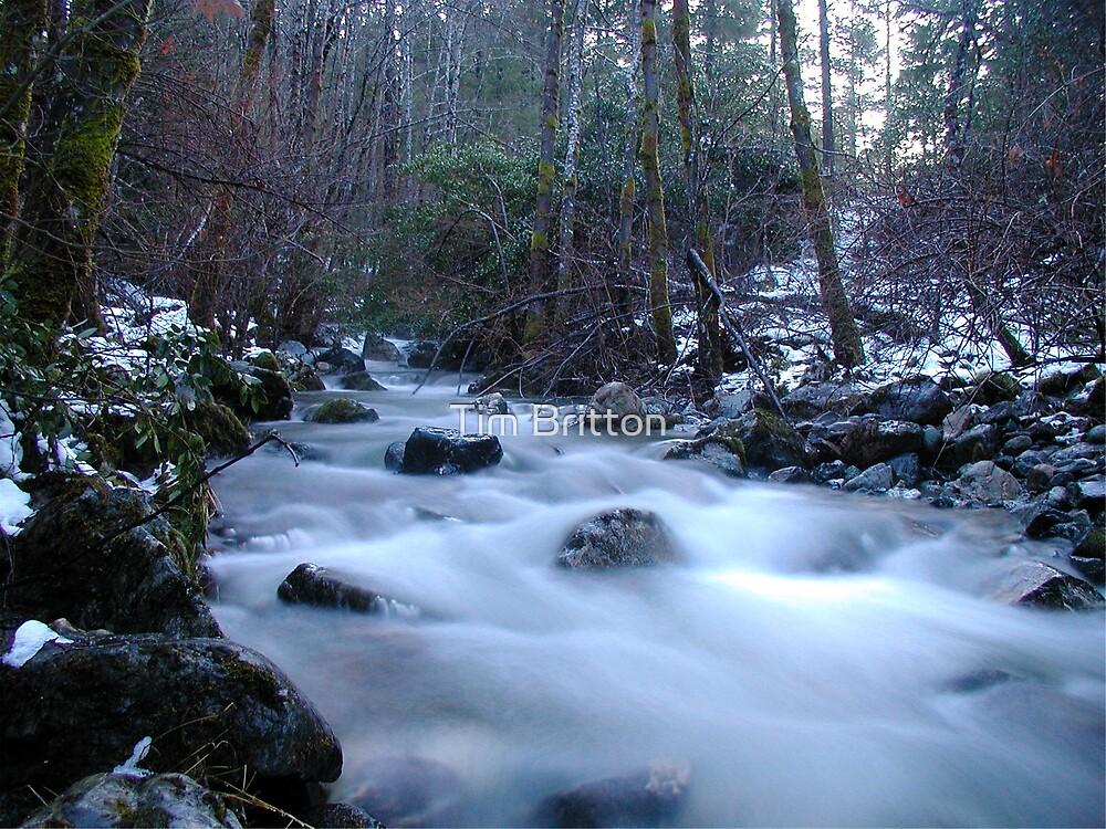 Mill Creek by TimsWorld