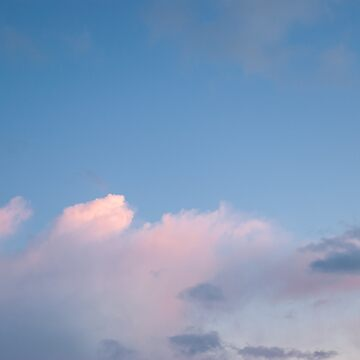 Pink Clouds Float Away by rachelallison