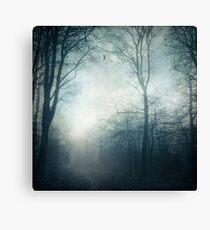 Dark Paths - Misty Forest on a November day Canvas Print