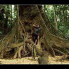 tree-me by Tony Middleton