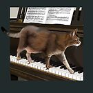 Cat and Grand Piano by Martine Carlsen