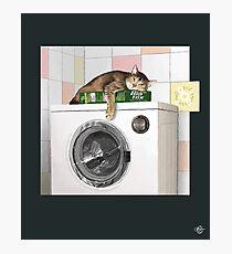 Cat and Washing Machine Photographic Print