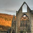 The Nave's West Window - Tintern Abbey by missmoneypenny