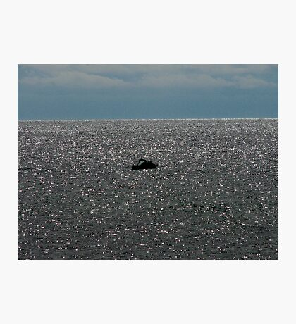 Little Boat - Big Ocean Photographic Print