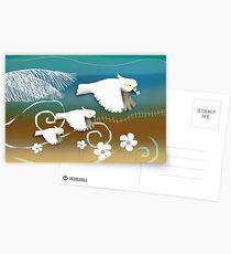 Sulphur-crested Cockatoos Postcards