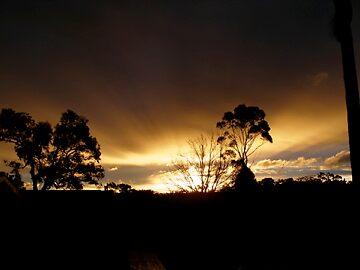 Winter's Sunset by wendyanne