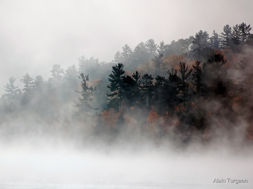 Misty Morning by Alain Turgeon