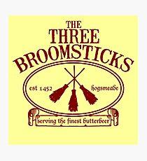 The Three Broomsticks Inn Photographic Print