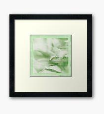 Garden II Framed Print