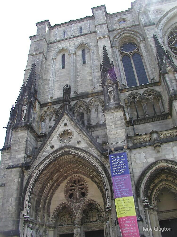 Cathedral Image by Ilene Clayton