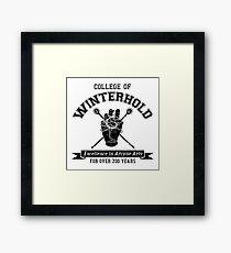 Winterhold College Framed Print