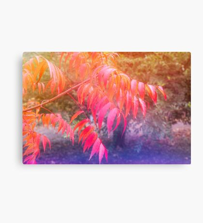 Dreaming of Autumn Canvas Print