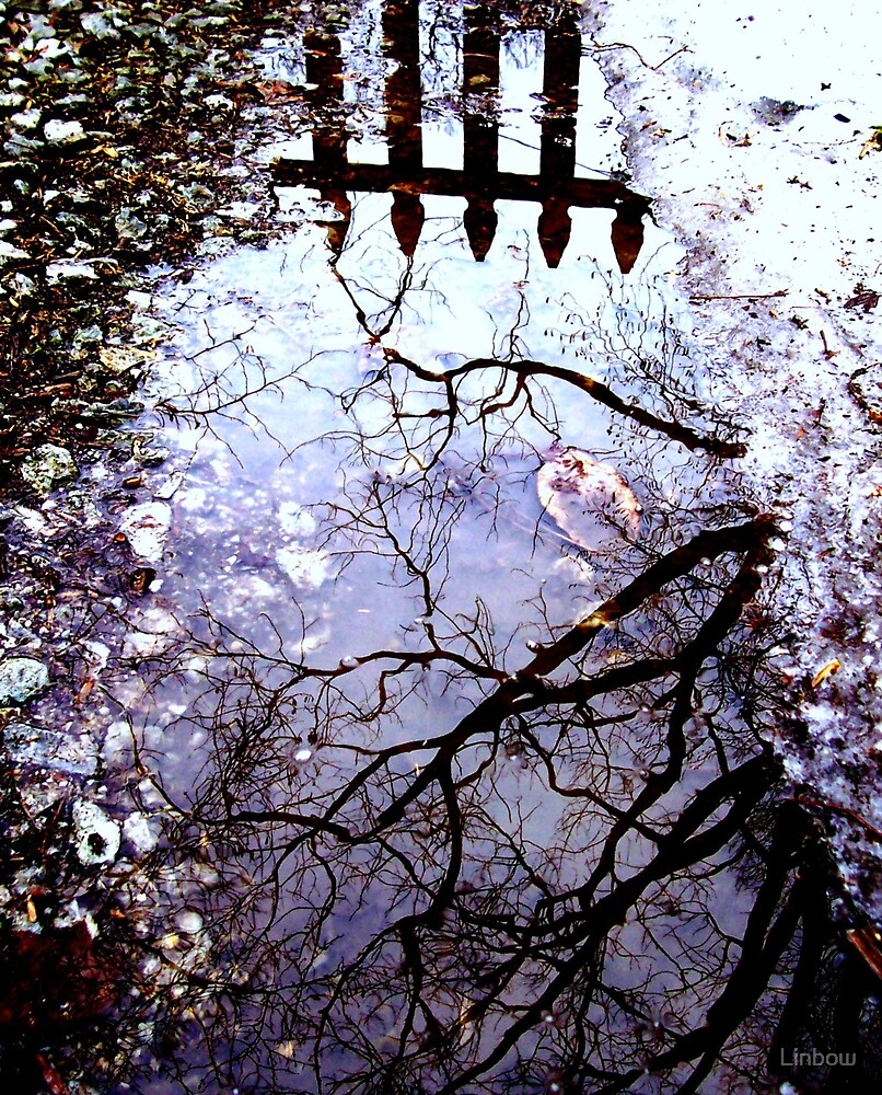 Reflections by Linbow