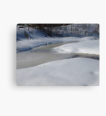 Cam Time for winter Canvas Print