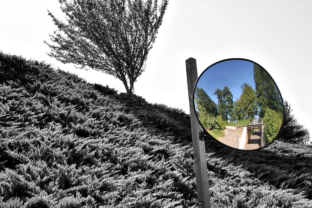 Bubble Mirror by Dan Jesperson