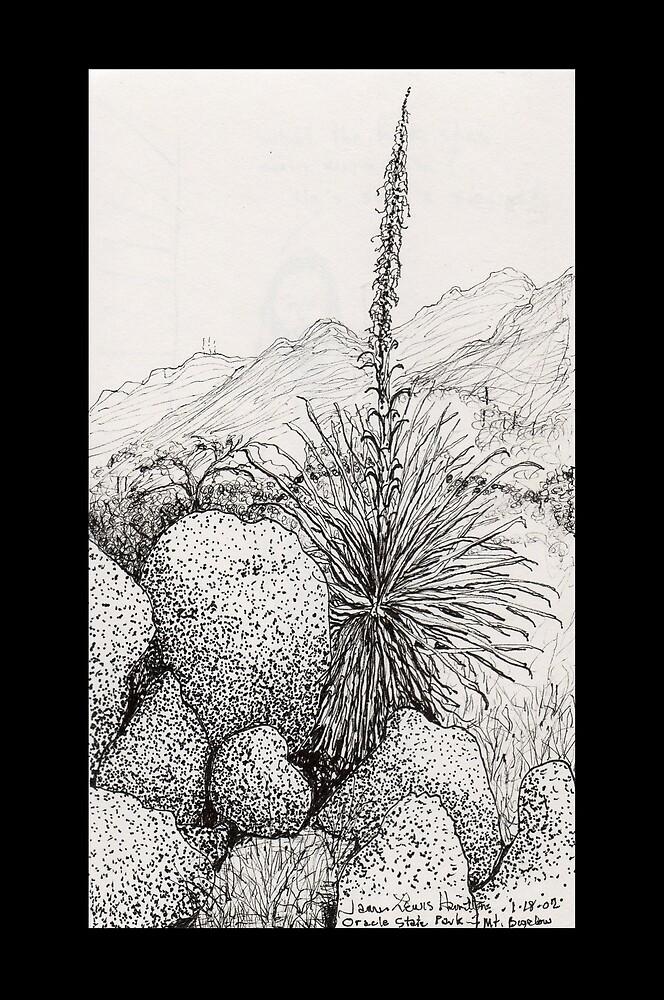 A Desert Scene North of Mount Lemmon, Arizona by James Lewis Hamilton