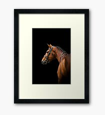 dressage horse over a black Framed Print