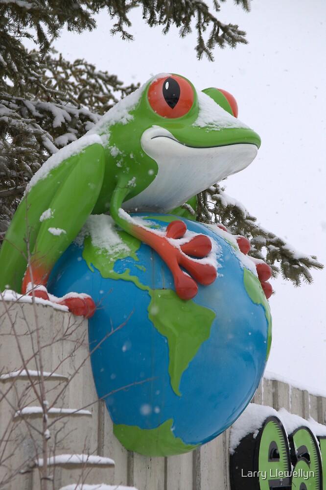 A Frog in Winter by Larry Llewellyn