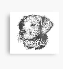 Vector Drawn Labrador Metal Print