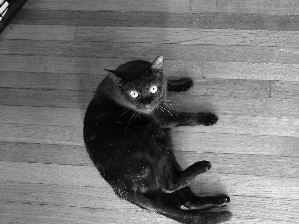 Booo Kitty by Underthebamasky