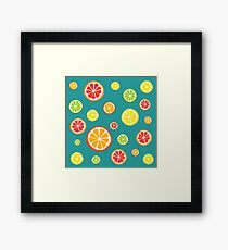 Collection of citrus slices - orange, lemon, lime and grapefruit Framed Print